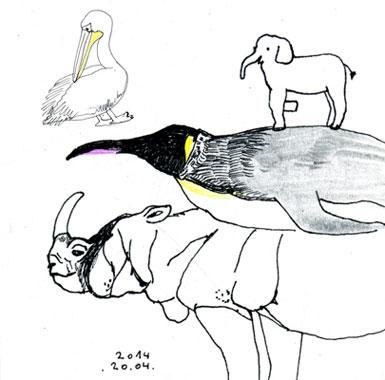 pelicanjpg